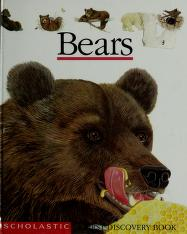 Cover of: Bears | created by Gallimard Jeunesse and Laura Bour ; illustrated by Laura Bour.